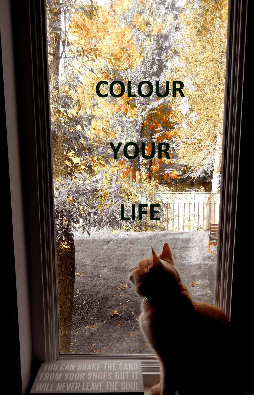 Colour Your Life!