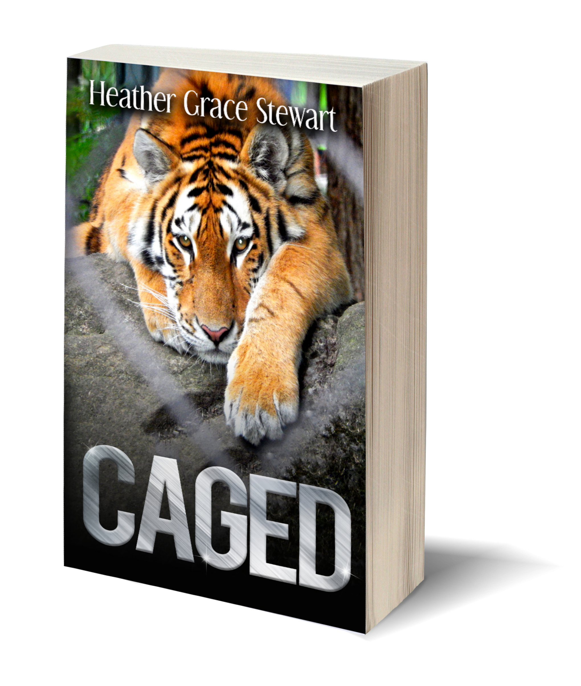3d-book-caged
